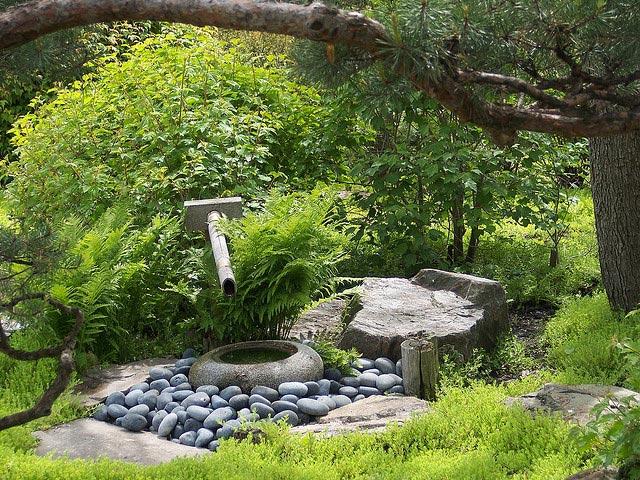 pierre-jardin-zen-zoom